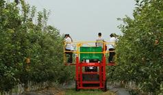 Orchard Machinery